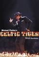 "dvd диск с фильмом Майкл Флэтли ""Кельтский Тигр"""