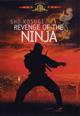 dvd диск с фильмом Месть ниндзя