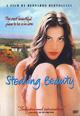 dvd диск с фильмом Ускользающая красота