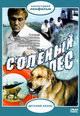 dvd диск с фильмом Солёный пёс