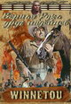 dvd диск с фильмом Верная рука друг индейцев